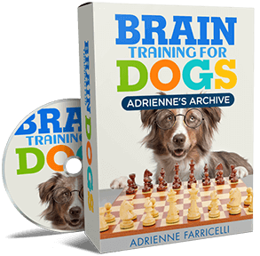 brain training for dogs adrienne farricelli